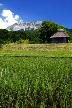 Rural Japan Mitsukue 御机